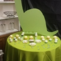 Dinosaur Table  $40.00 / Tablecloth Rental $3.00
